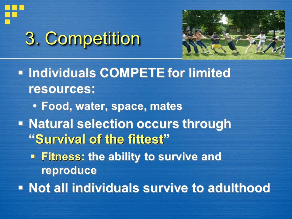3. Competition Individuals COMPETE for limited resources: