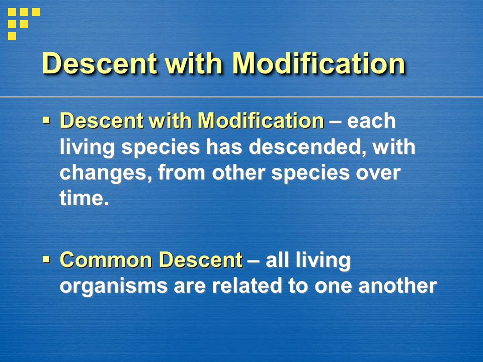 Descent with Modification