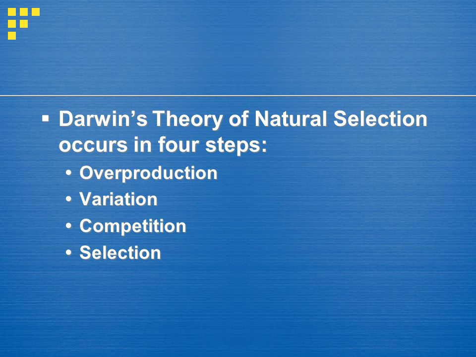Darwin's Theory of Natural Selection occurs in four steps: