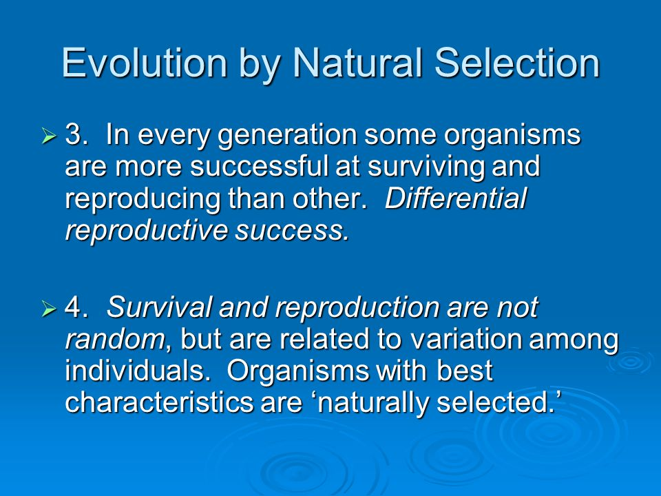 Differential Reproductive Success Natural Selection