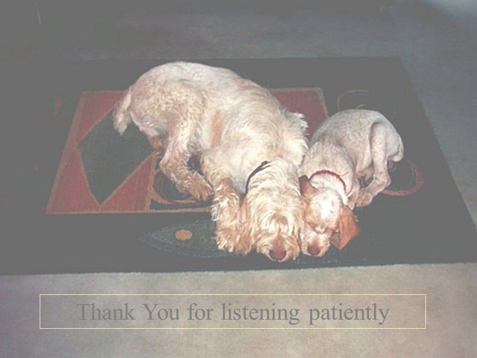 Thank You for listening patiently