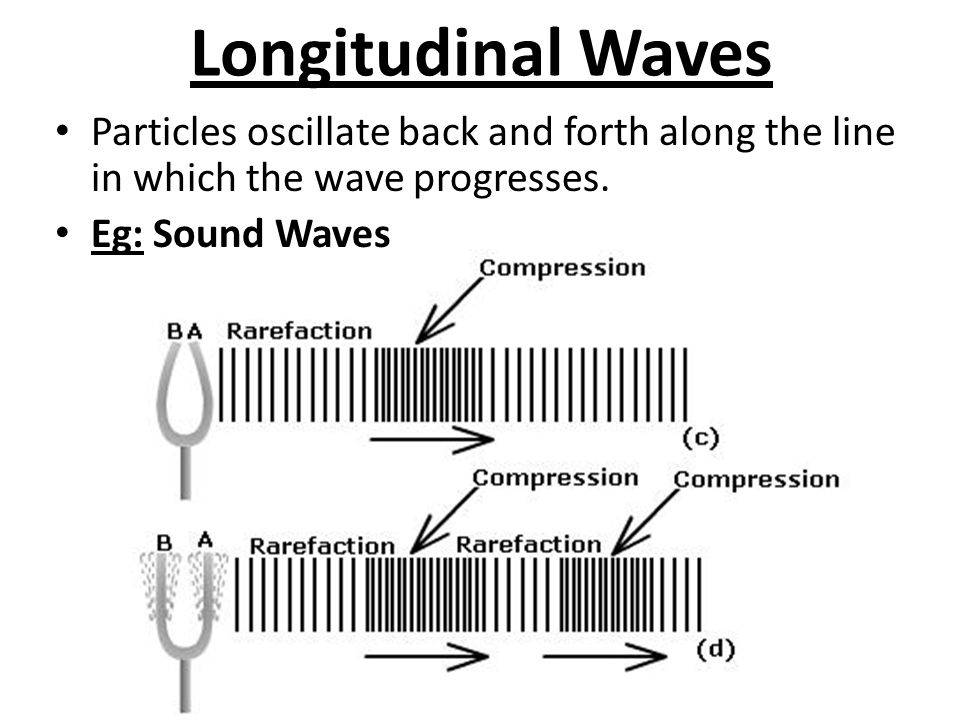 Longitudinal Waves Particles oscillate back and forth along the line in which the wave progresses.
