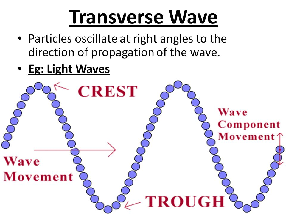 Transverse Wave Particles oscillate at right angles to the direction of propagation of the wave.