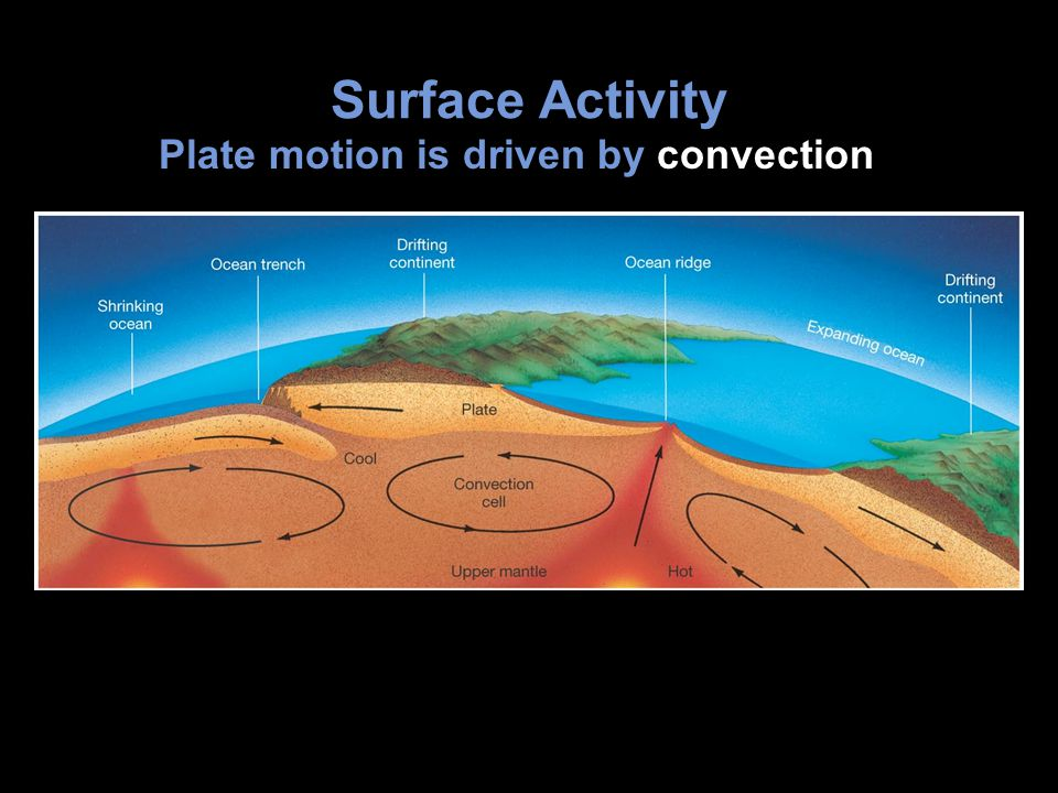 Surface Activity Plate motion is driven by convection