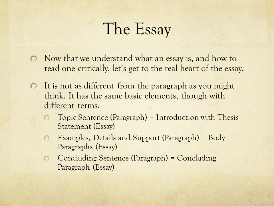 and it all comes down to this the essay ppt the essay now that we understand what an essay is and how to one