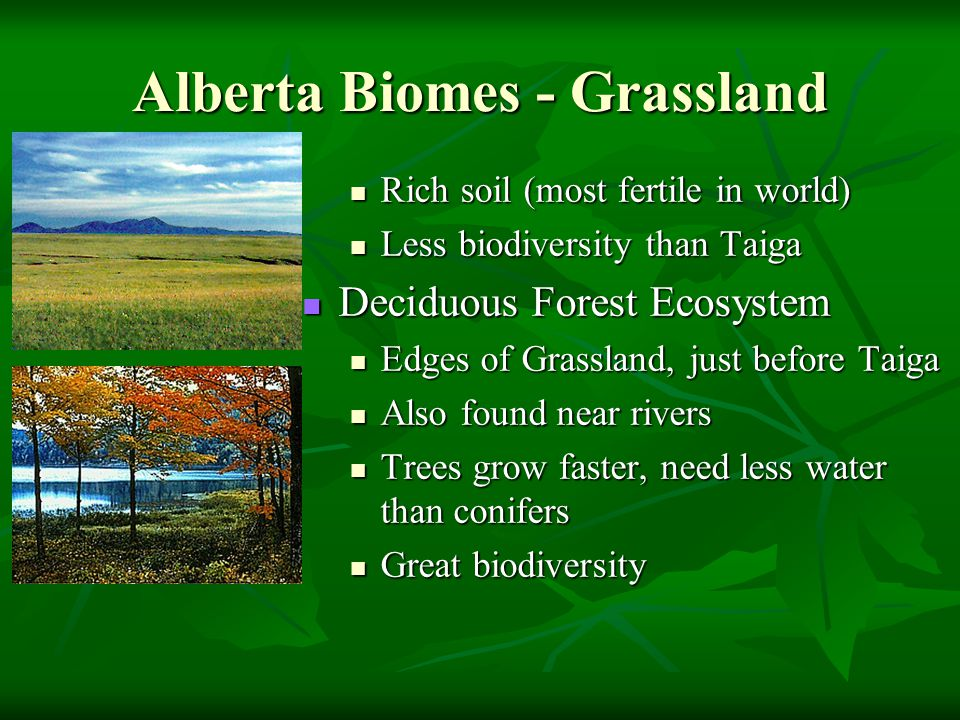 3 3 studying organisms in ecosystems ppt video online for Soil zones of alberta