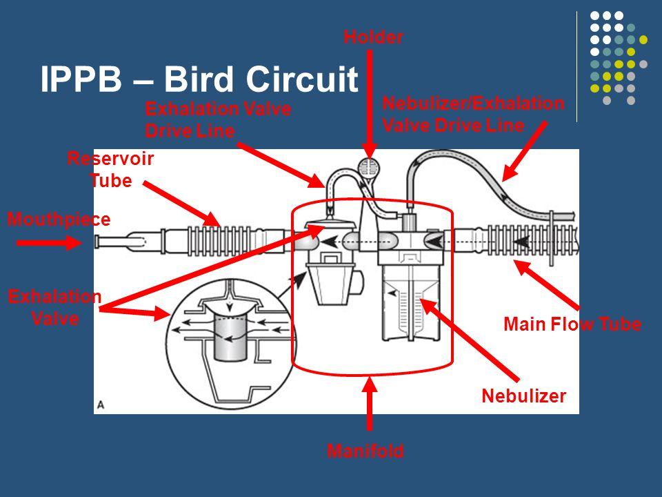 intermittent positive pressure breathing ippb ppt