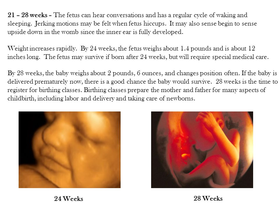 21 – 28 weeks – The fetus can hear conversations and has a regular cycle of waking and sleeping. Jerking motions may be felt when fetus hiccups. It may also sense begin to sense upside down in the womb since the inner ear is fully developed.