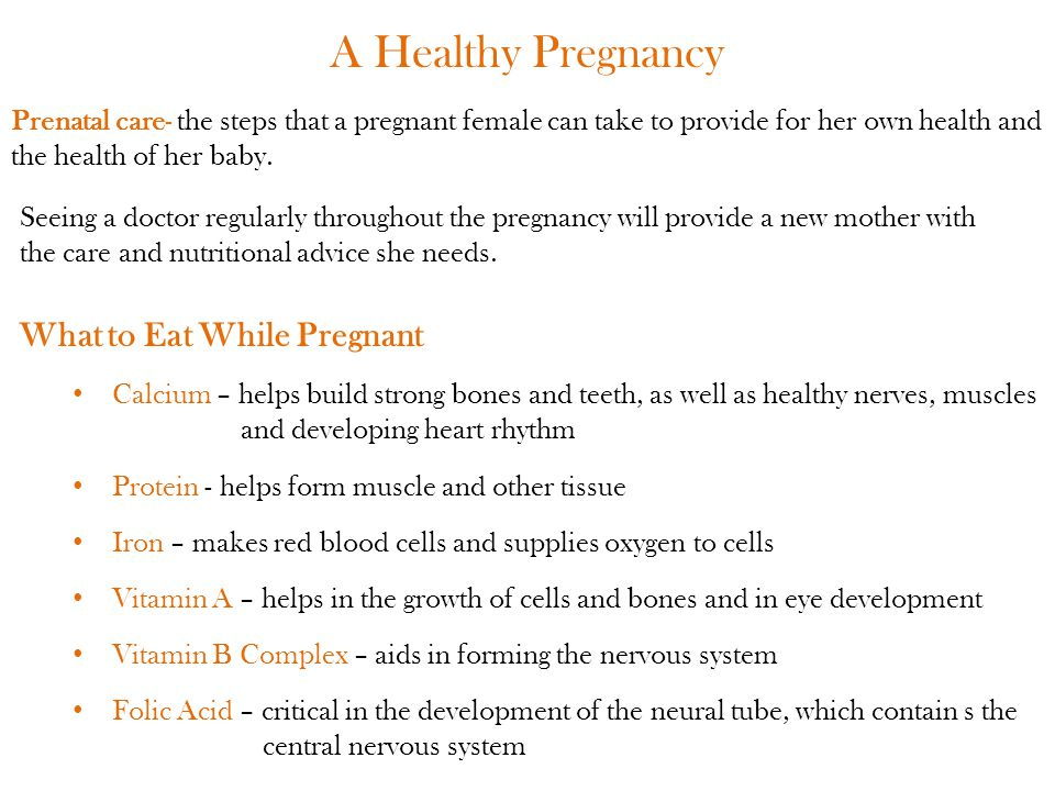 A Healthy Pregnancy What to Eat While Pregnant
