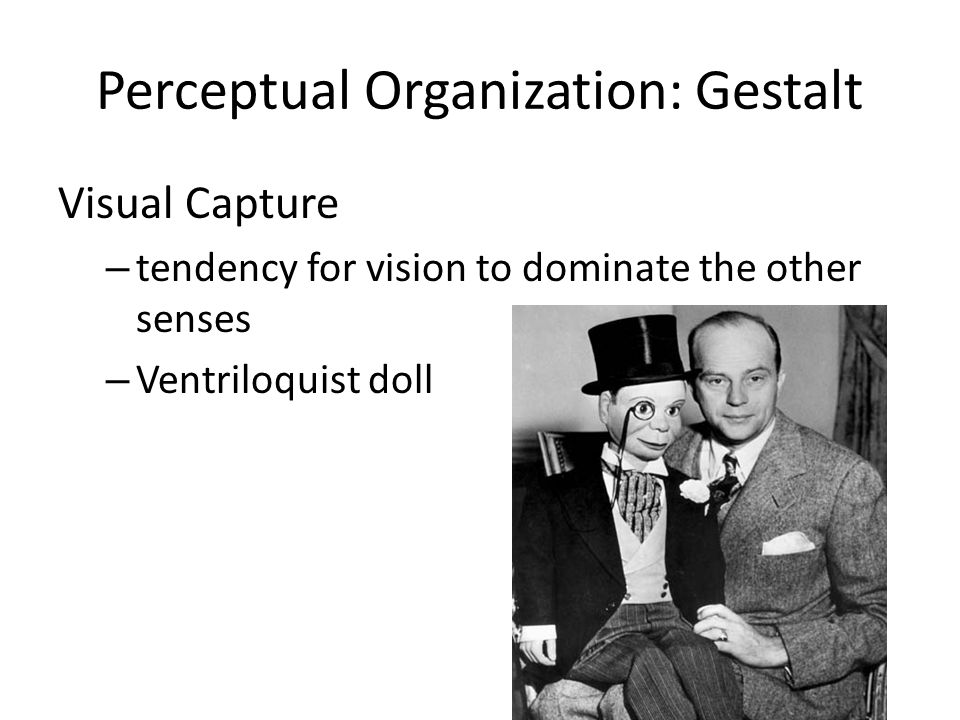 essay gestalt in organization perception vision Download and read organization in vision essays on gestalt perception organization in vision essays on gestalt perception change your habit to hang or waste the time.