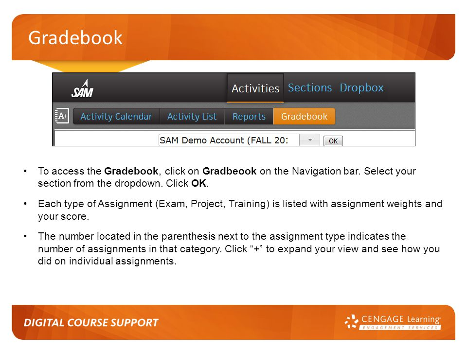 Gradebook To access the Gradebook, click on Gradbeook on the Navigation bar. Select your section from the dropdown. Click OK.