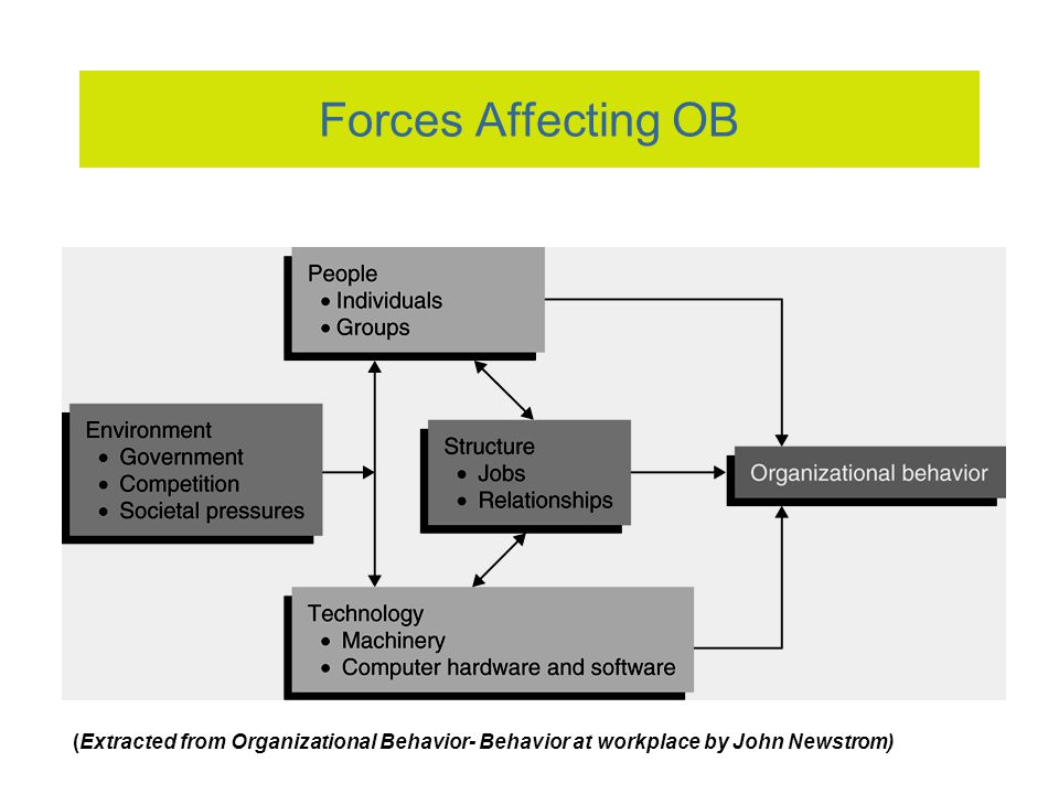 key forces affecting organizational behavior Factors on organizational structure is traditionally divided predict behavior organizational structure: influencing factors and impact on a firm.