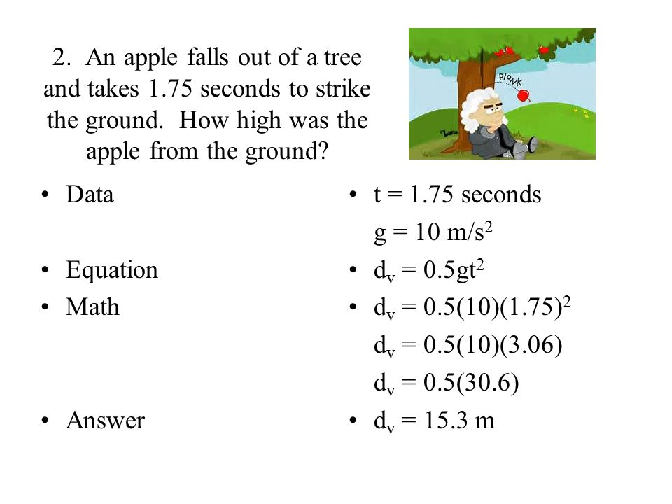 2. An apple falls out of a tree and takes 1