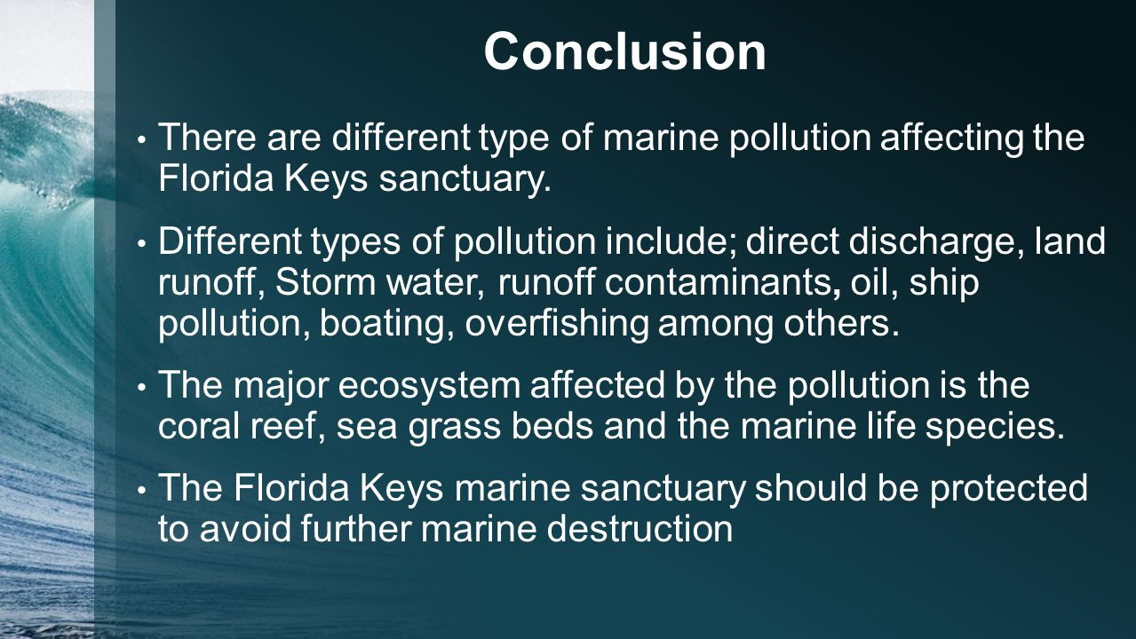 essay different types water pollution Pollution and environment essay - water pollution environment  certin types of  fish, animals, and plankton die if the water temperature is raised to much.