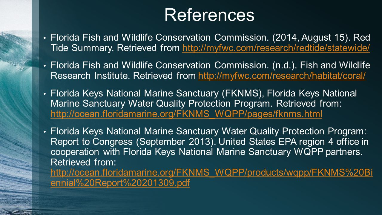 Marine pollution in the florida keys national marine sanctuary 21 references nvjuhfo Image collections