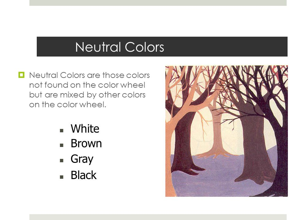 Is Black A Neutral Color the color wheel the color wheel is a means of organizing the