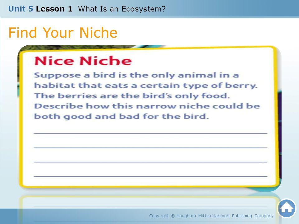 5 lesson 1