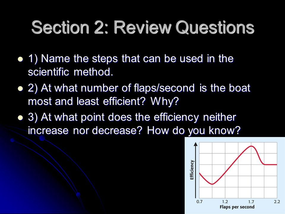 Section 2: Review Questions