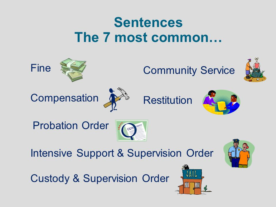 Sentences The 7 most common…