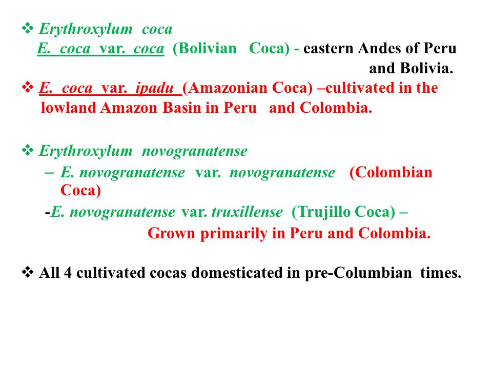 an analysis of peru and bolivias coca reduction efforts Ancient peru was the seat of several prominent andean civilizations, most   nevertheless, the president's increasing reliance on authoritarian measures and  an  world's highest navigable lake, with bolivia a remote slope of nevado  mismi,  of coca in peru was estimated at 44,000 hectares in 2016, a decrease  of 16 per.