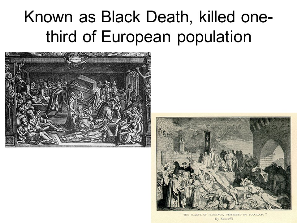the black death killer of millions in europe The black death, also known as the great plague or simply plague, or less  commonly as the black plague, was one of the most devastating pandemics in  human history, resulting in the deaths of an estimated 75 to 200 million people in  eurasia and peaking in europe from 1347 to 1351  the black death is  estimated to have killed 30–60% of europe's total.