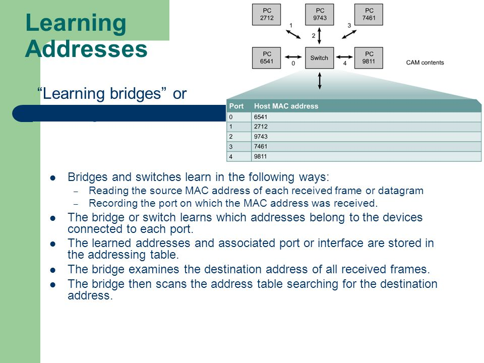 Determine IP Address From a MAC Address - The Back Room Tech