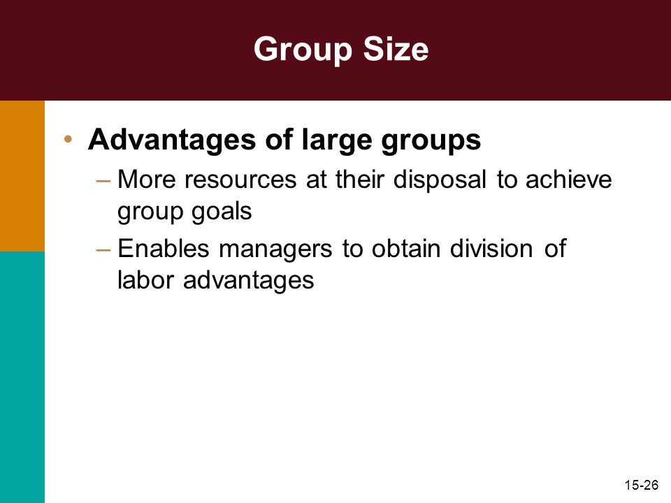 Group Size Advantages of large groups