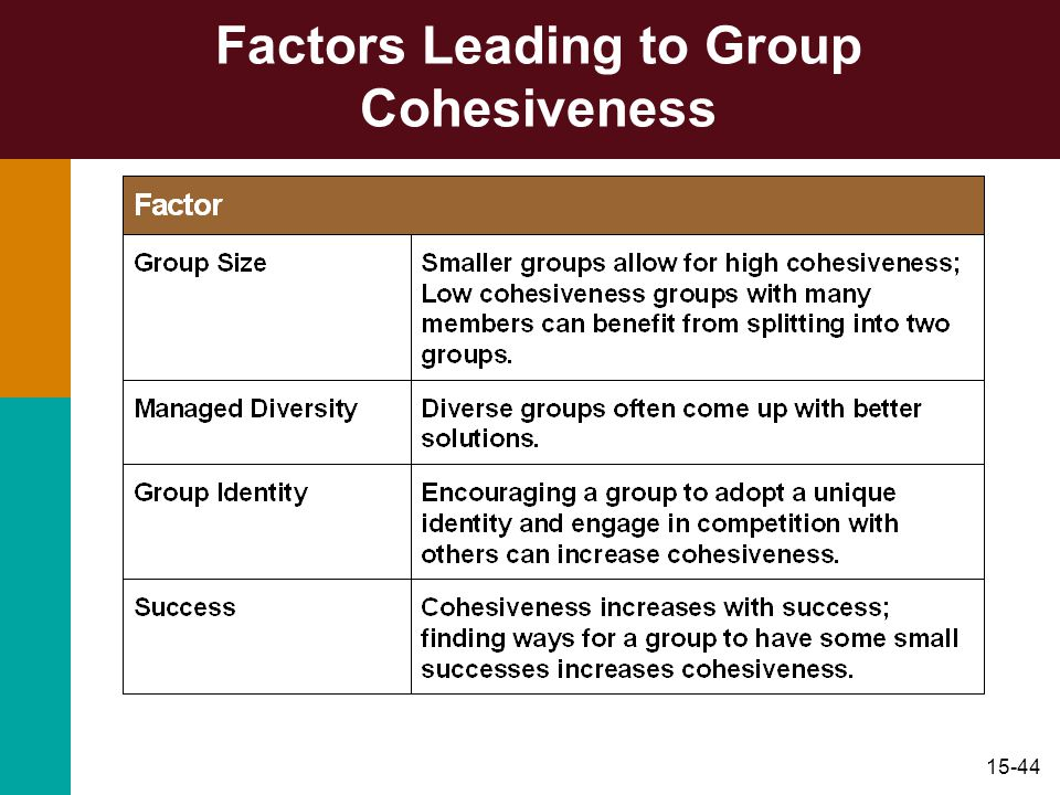 Factors Leading to Group Cohesiveness