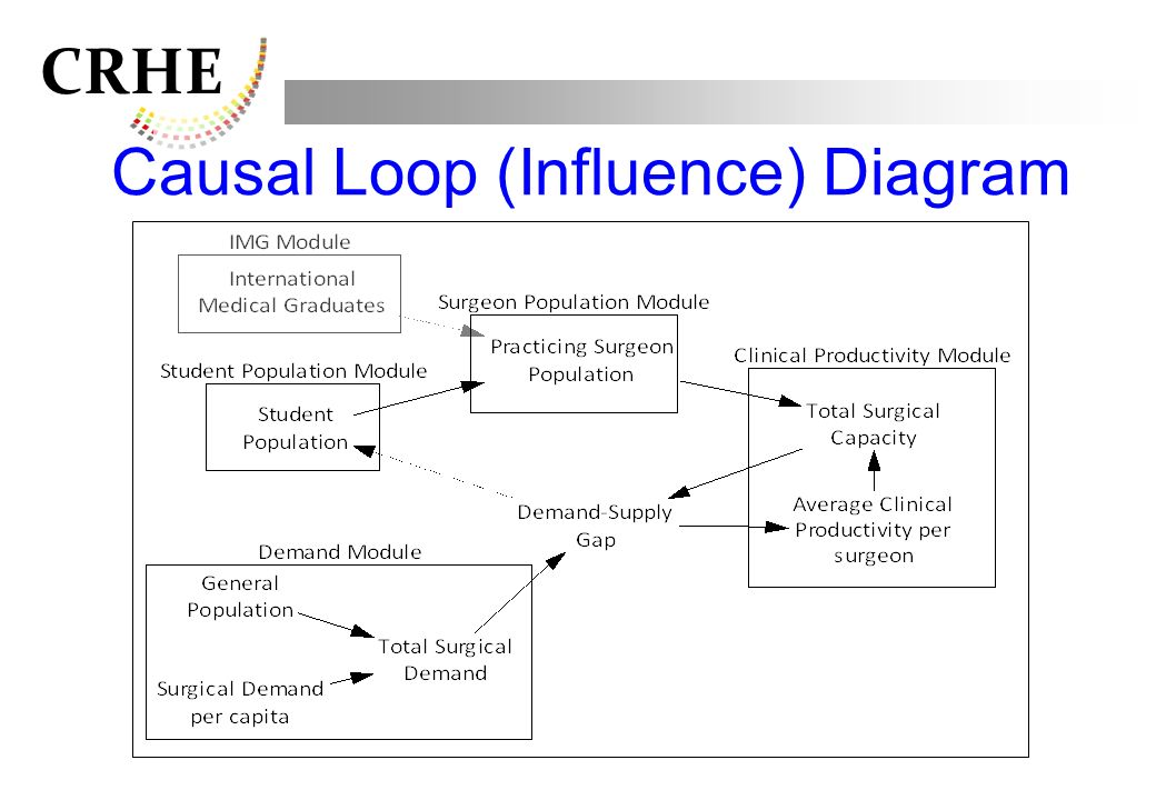 Causal Loop (Influence) Diagram