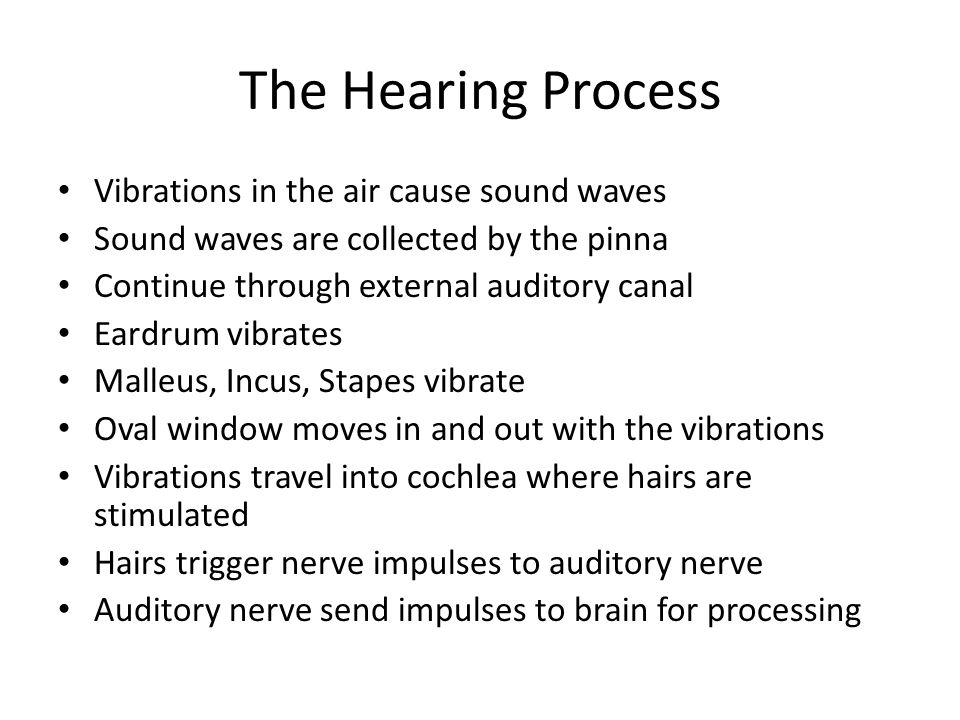The Hearing Process Vibrations in the air cause sound waves