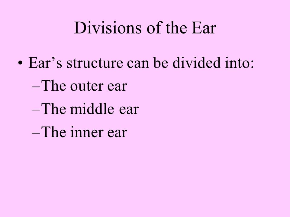 Divisions of the Ear Ear's structure can be divided into: