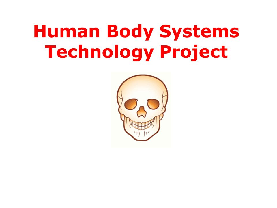 body systems project Isn't the human body incredible from the complex systems that make it work to the numerous ways we're able to cure illnesses, there are so many fascinating subjects to study when it comes to human biology and health.
