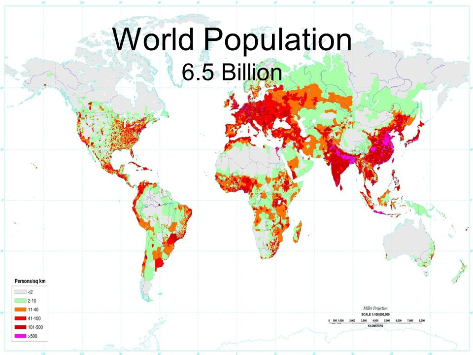 World Population 6.5 Billion