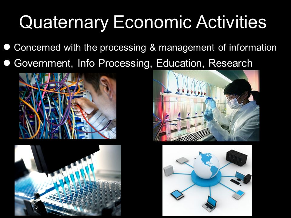 Quaternary Economic Activities