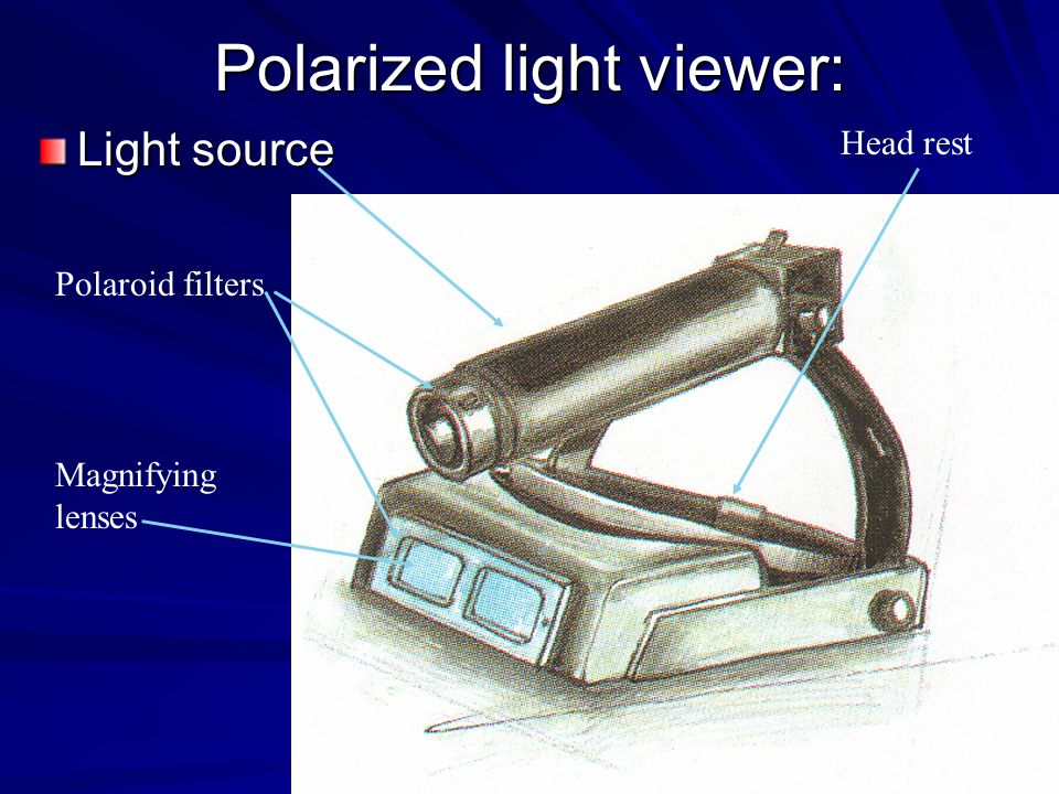 Polarized light viewer: