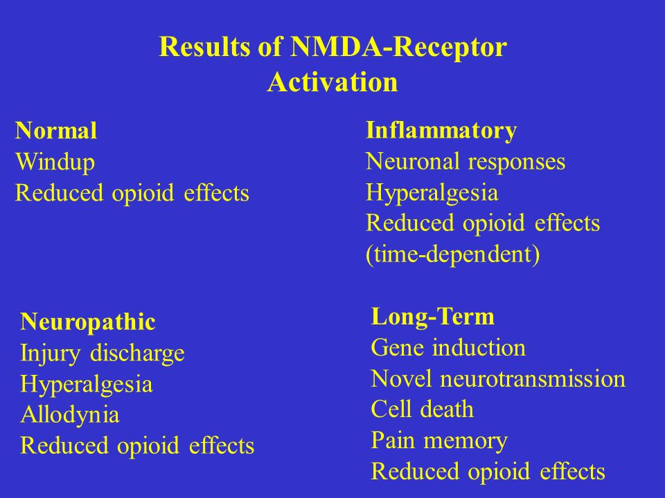 Results of NMDA-Receptor Activation