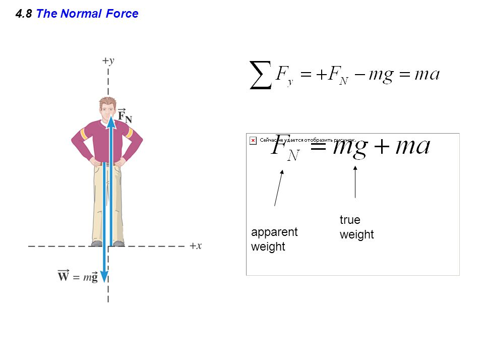 4.8 The Normal Force true weight apparent weight