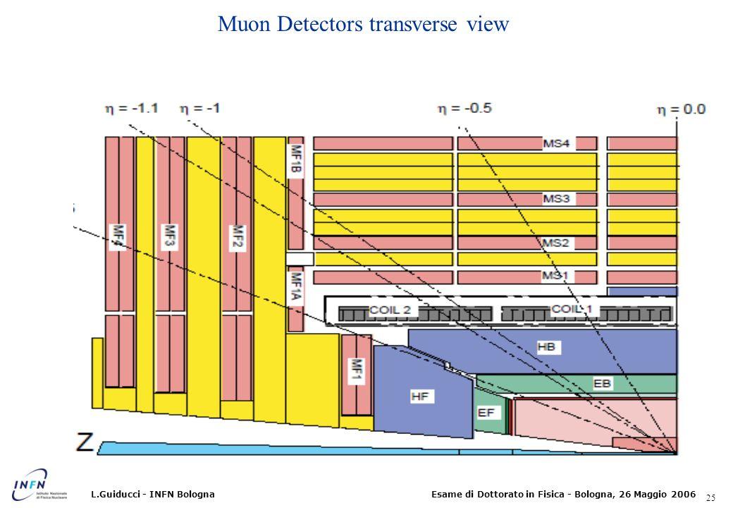 Muon Detectors transverse view