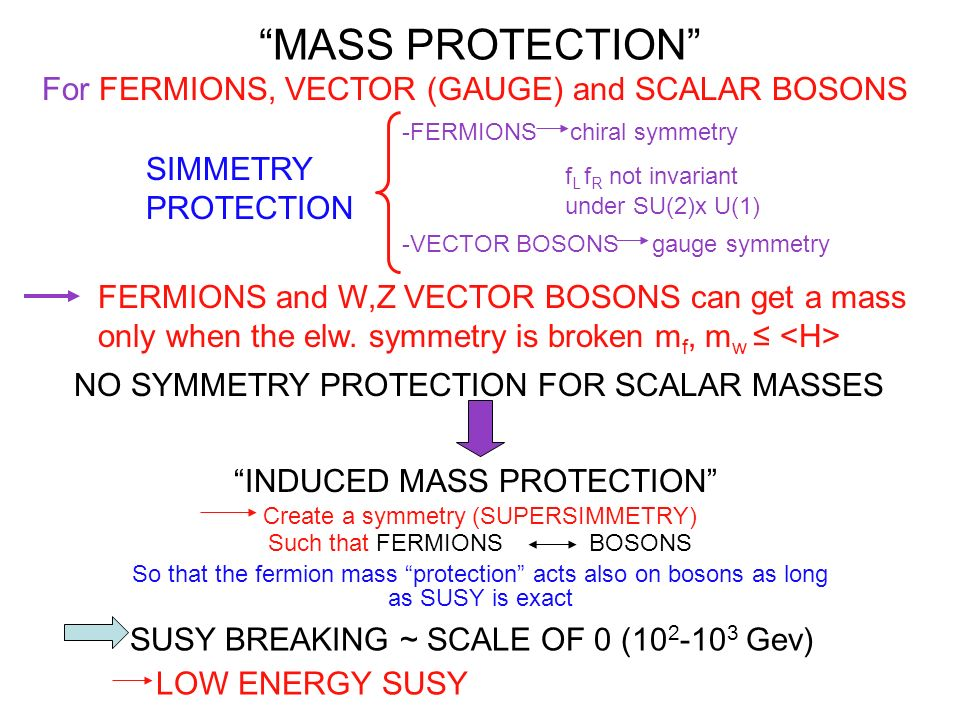 MASS PROTECTION For FERMIONS, VECTOR (GAUGE) and SCALAR BOSONS