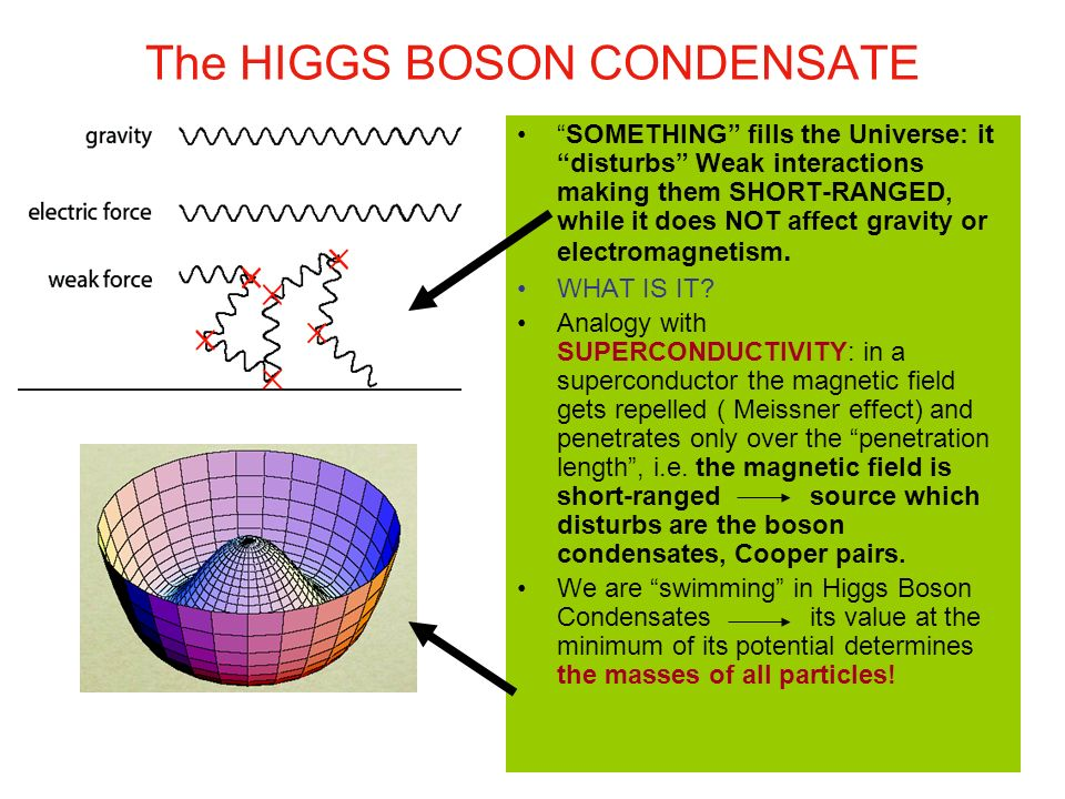 The HIGGS BOSON CONDENSATE