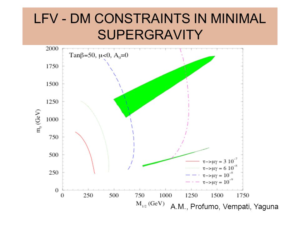 LFV - DM CONSTRAINTS IN MINIMAL SUPERGRAVITY