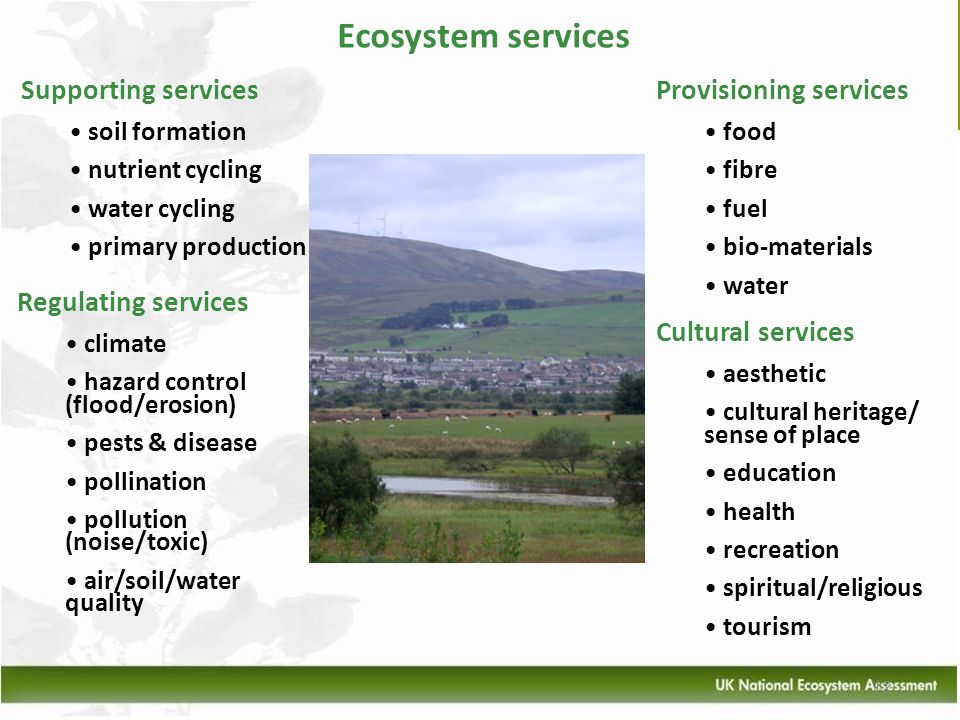 Ecosystem services Supporting services Provisioning services