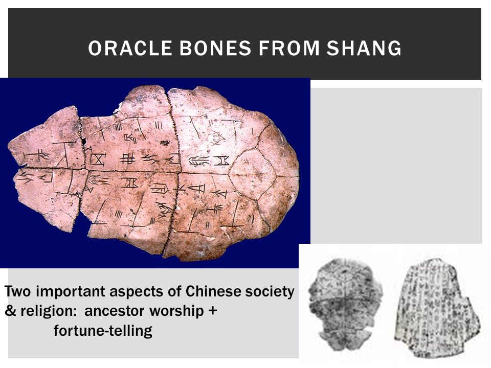 Oracle Bones from Shang