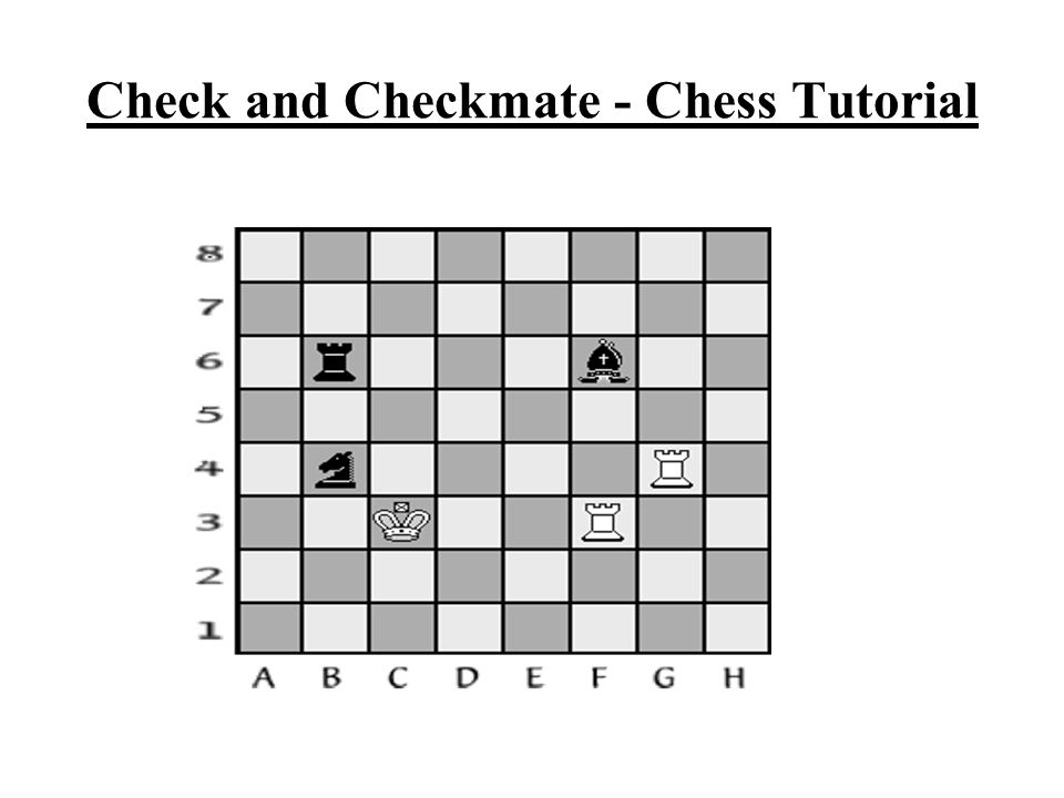 come join in all the fun beginner chess club