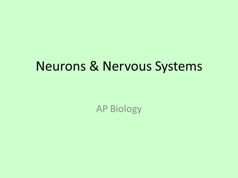Neurons & Nervous Systems