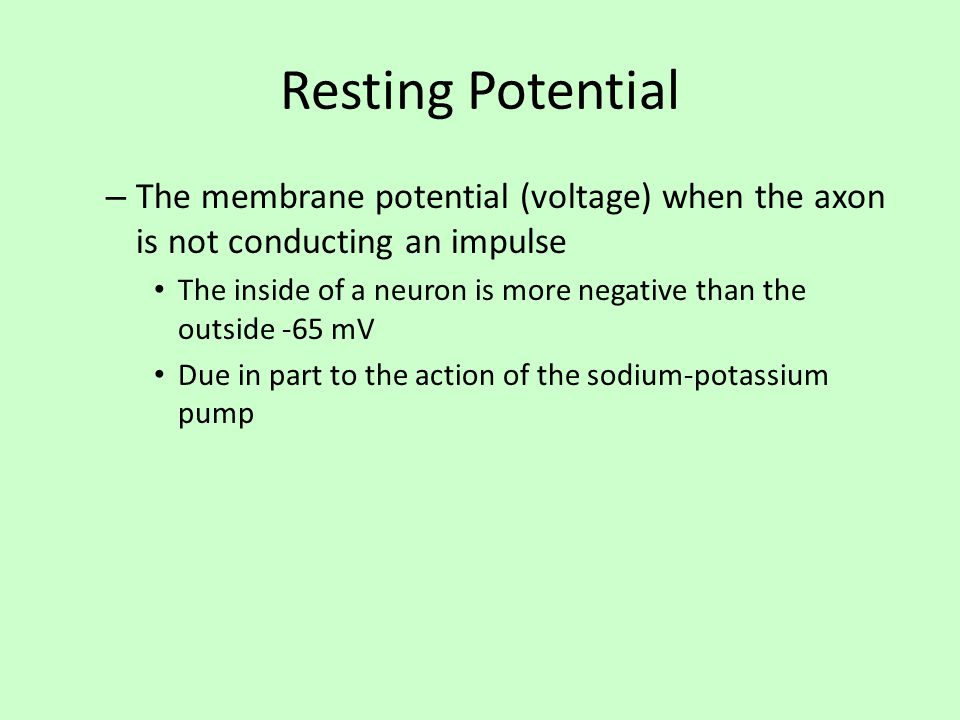 Resting Potential The membrane potential (voltage) when the axon is not conducting an impulse.