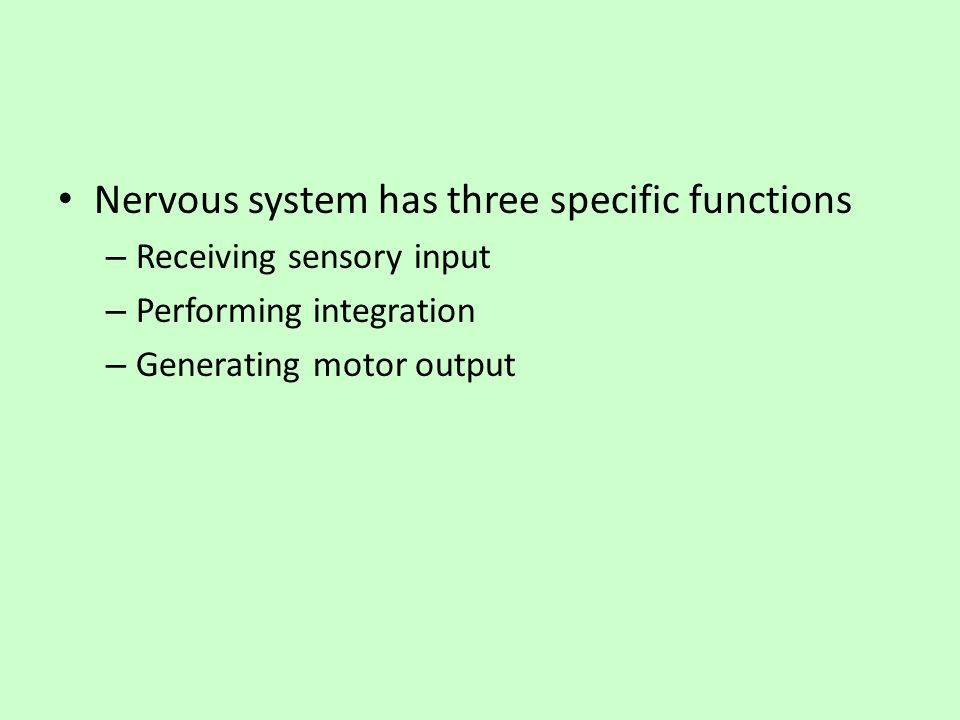 Nervous system has three specific functions