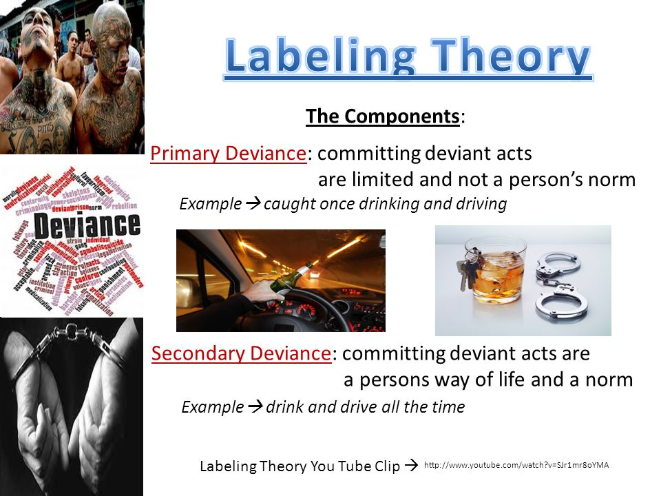 Labeling Theory You Tube Clip 