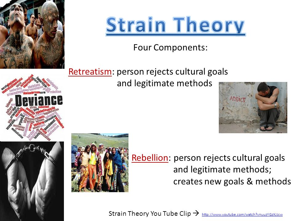 Strain Theory Four Components: