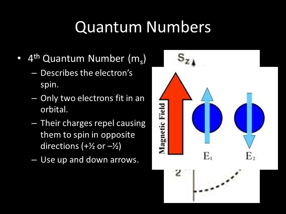 Quantum Numbers 4th Quantum Number (ms) Describes the electron's spin.